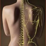 osteopata bari