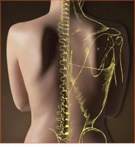 osteopatiajpg